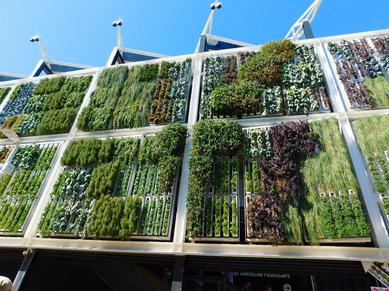 Vertikalni vrtovi – ideje za vlastiti doprinos budućnosti!